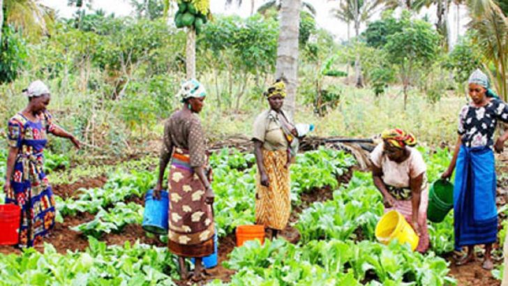 Agro Park Launches 'Invest To Empower' Campaign