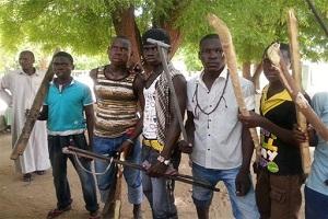 Civilian JTF Arrests Terrorists In Damboa