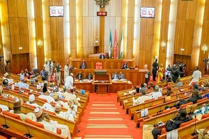 Saraki Appeases Tinubu With Plum Senate C'ttee Post