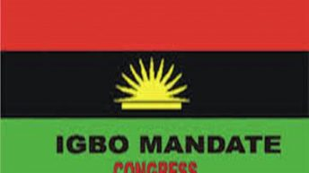 #Endsars Attack on Northerners – Igbo Mandate Congress Absolves Ndigbo