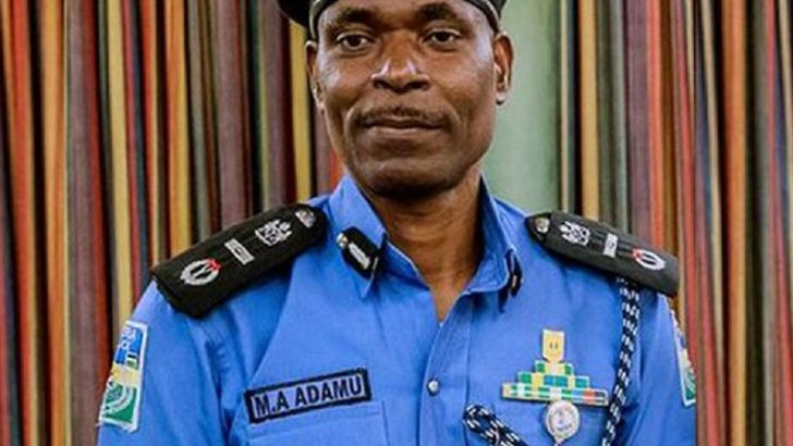 Report on Shooting of Protesters by the Police Not True—IGP Tells Amnesty Int'l