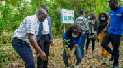JCI Flags Off Go-Green Initiative In Oyo